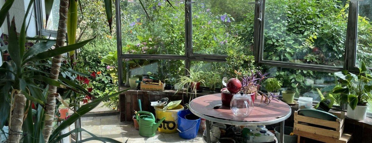Wintergarten Idee bei einem Haus.