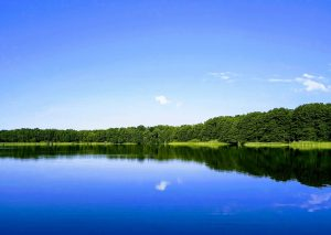 Ein See mitten in Brandenburg umgeben von grünen Bäumen. Von Berlin nach Brandenburg aufs Land..